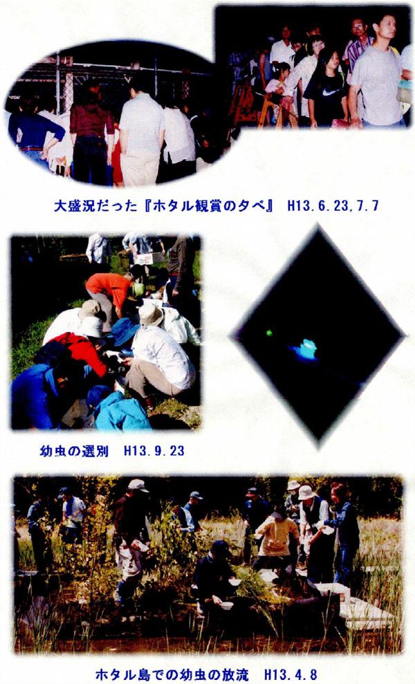 平成13年 会報第3号